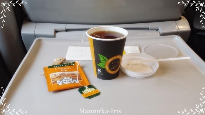 ポーランド観光ワルシャワインターシティペンドリーノマズーリ生活食べ物