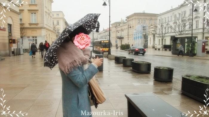 ポーランドワルシャワ観光ガイドショパン巡り