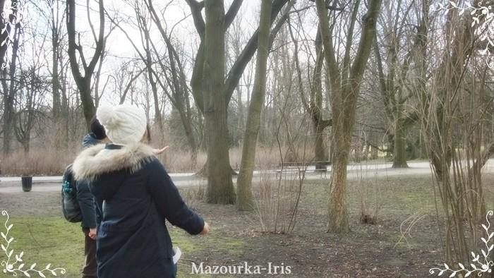 ワルシャワ観光旧市街ガイドワジェンキ公園