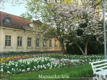ポーランドワルシャワ観光おすすめ観光ガイドヴィラヌフ宮殿