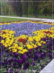 ポーランドワルシャワ観光おすすめ観光ガイドサスキ公園