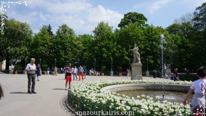 ワジェンキ公園