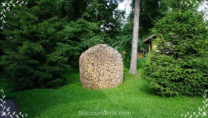 ポーランドビャオビエジャの森ポーランドブログ行き方買い方
