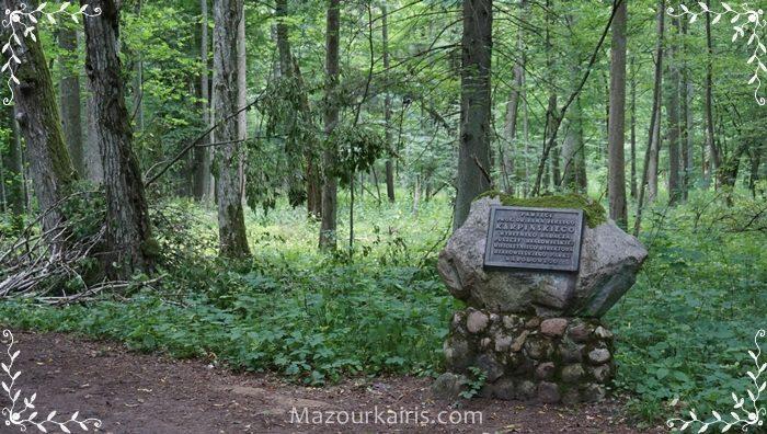 ビャウォヴィエジャの森